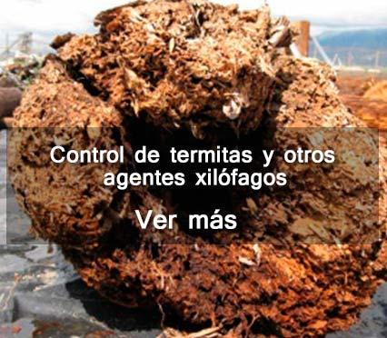 Control de termitas otros agentes xilofagos