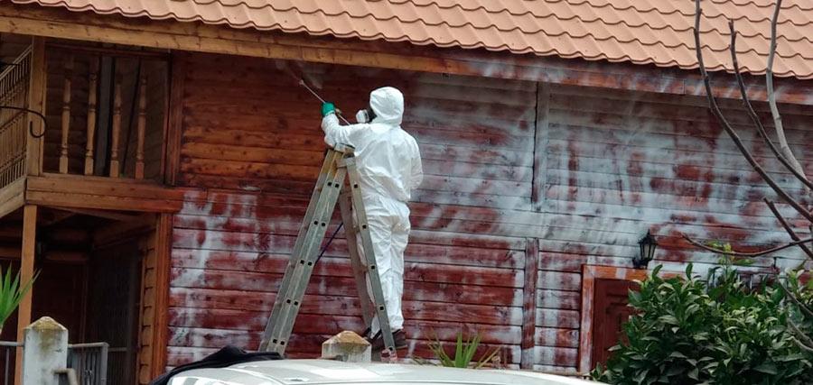 Ecomol - Tratamiento de muro anti termitas