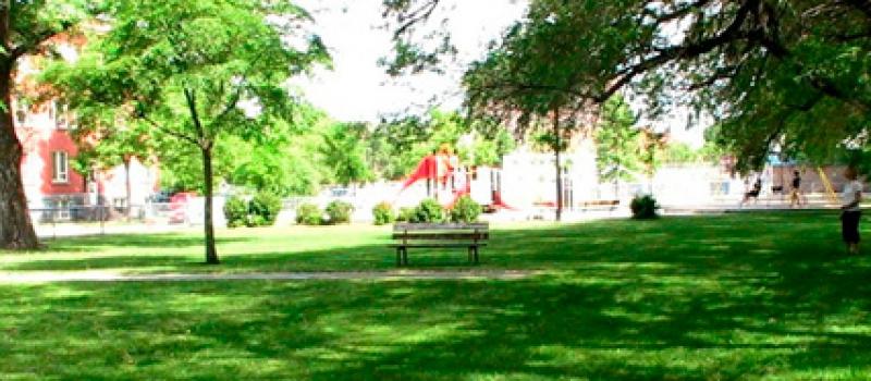 Tratamiento de espacios verdes